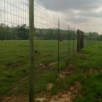 game fence 03312015-1 (2)